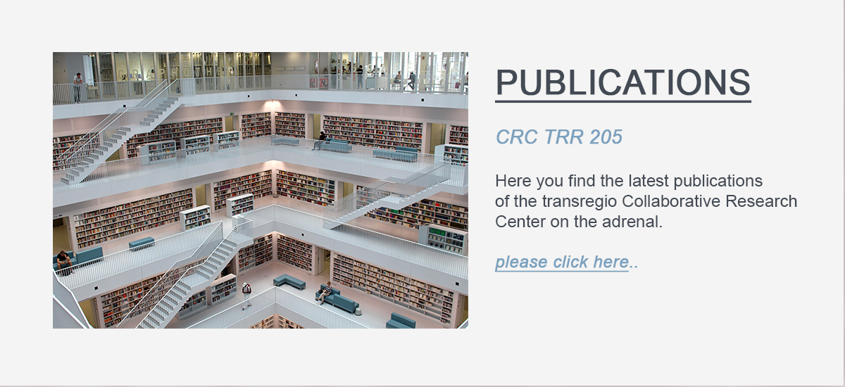 Link Button to the CRC TRR 205 Publicationslist