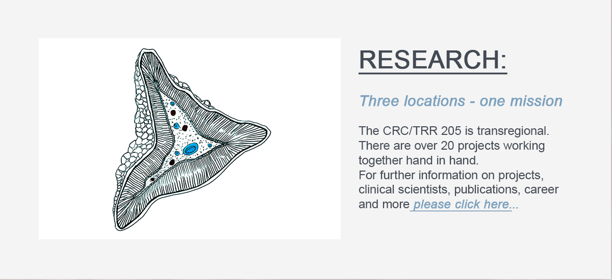 Sorry a technical problem occured. Here is supposed to be the linkbutton to the RESEARCH site of the CRCTRR 205.