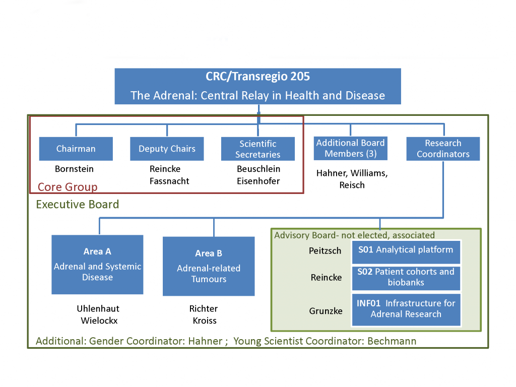 Here is supposed to be an overview of the structure of the CRC/TRR 205.