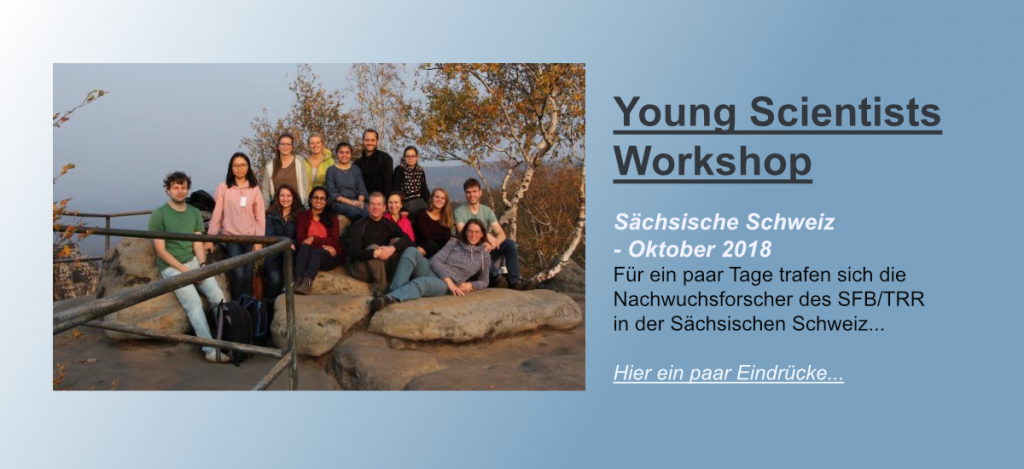 Here should be the linkbutton to the dokumentation of the Young Scientists Workshop of the CRC/TRR 205 in Oct 2018